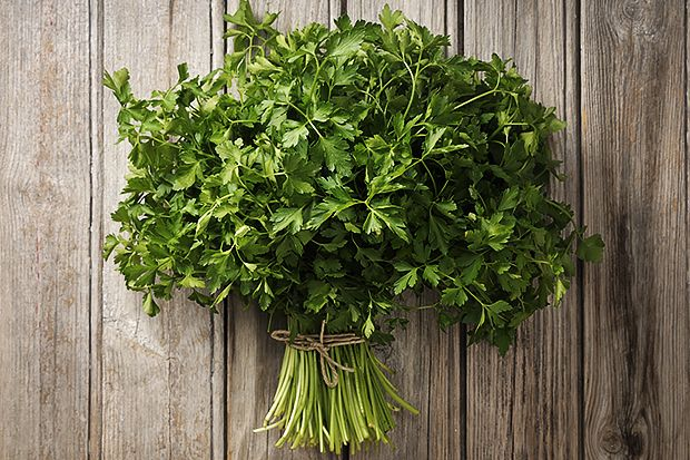 parsley_0
